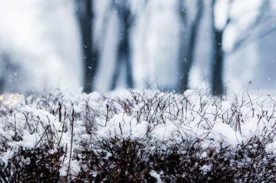 В регионы России пришли аномальные морозы