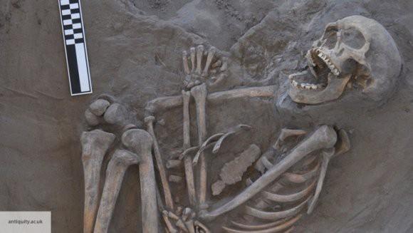 Археологи обнаружили захоронение обезглавленных скелетов в Англии