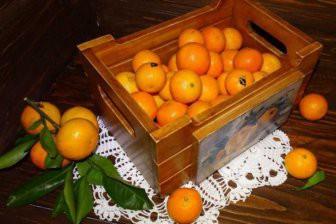 В МВД России объяснили поездку обиженных полицейских за мандаринами