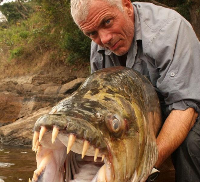 Мужчина поймал гигантскую пиранью, которая может охотиться даже на крокодилов