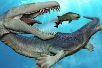 В Египте в желудке древнего кита нашлись останки кита поменьше
