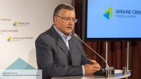 Кандидат в президенты Украины Гриценко пообещал отрубить руки за коррупцию и кумовство