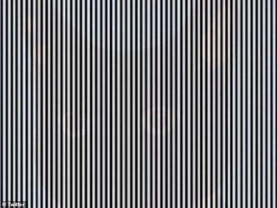 Покачайте головой: удивительная оптическая иллюзия взрывает Twitter