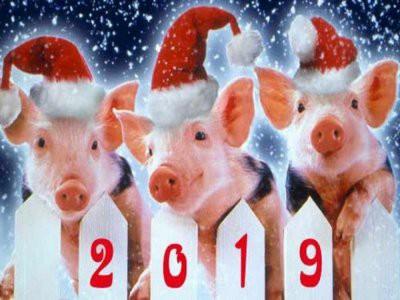 В 2019 году дата китайского Нового года выпадает на 5 февраля