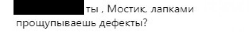 Кот Мостик вместе со специалистами проверил Крымский мост на дефекты