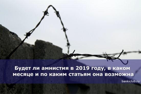 Будет ли амнистия в 2019 году, в каком месяце и по каким статьям она возможна