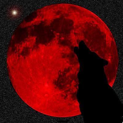 В январе над Землей взойдет Кровавая Волчья Луна