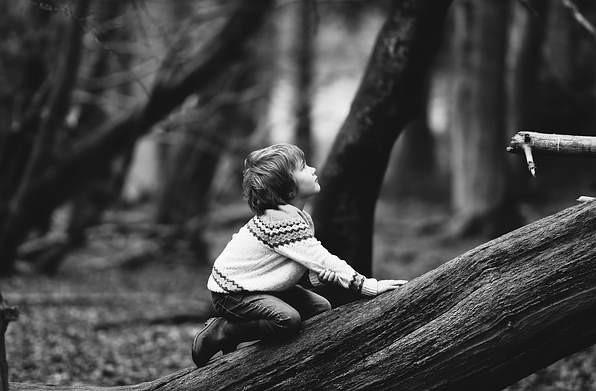 В штате Огайо нечто пыталось заманить мальчика в чащу леса