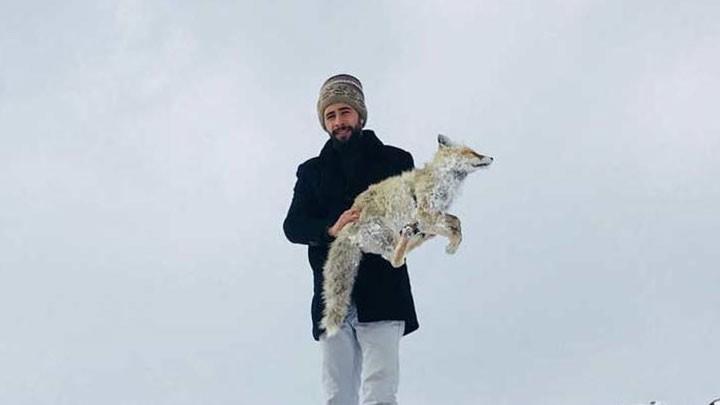 Убийственные морозы: в Турции от холода умирают даже дикие животные