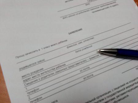 Как записать ребенка в школу в первый класс в 2019 году, в какие сроки и какие документы для этого нужны