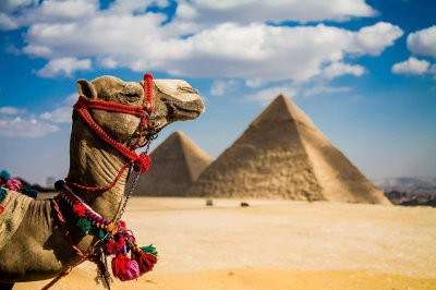 Запуск чартерных рейсов в Египет может произойти уже весной