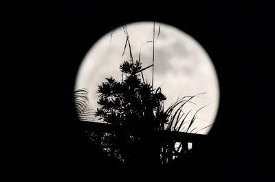 Лунное затмение смогут увидеть жители всей России