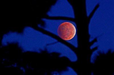 Лунное затмение сейчас наблюдают все жители Земли
