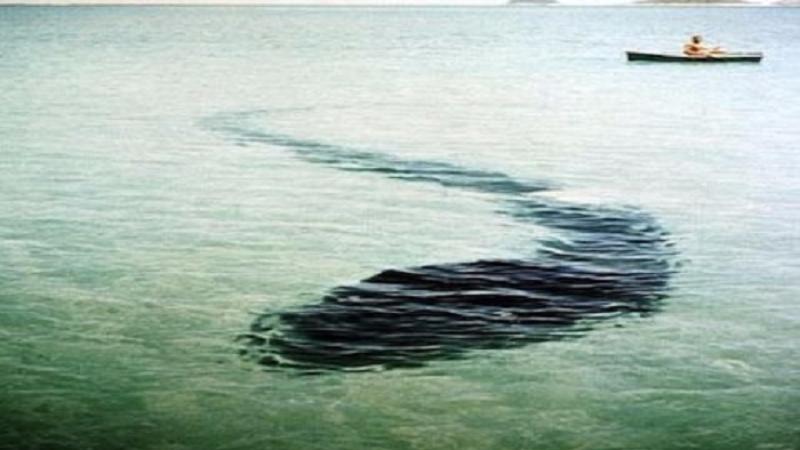 """""""Головастик"""" длиной 25 метров и отражение призрака в воде: мистические фотографии, которые не поддаются объяснению"""
