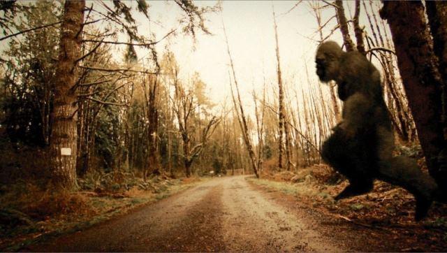 В Кентукки муж с женой едва не врезались в йети на дороге
