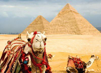 Возобновление чартерных перевозок в Египет произойдет к весне 2019