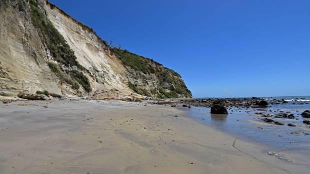 В Новой Зеландии на пляже нашли множество костей взрослых и детей