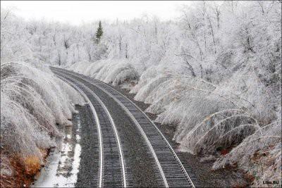К концу недели в Москве ожидает ледяной дождь