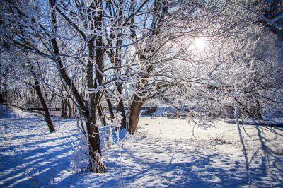 В Гидрометцентре рассказали, какой будет погода в центральных регионах в феврале и марте