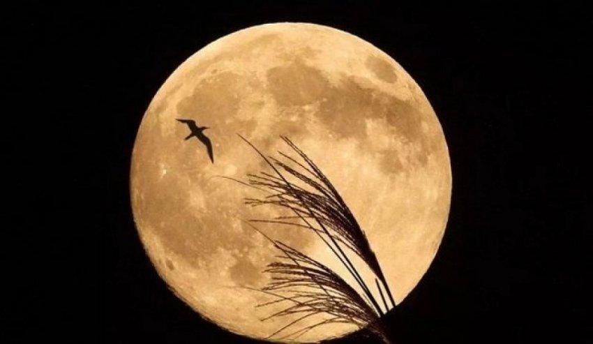Какая сегодня 05.01.2019 фаза Луны - растет или убывает, лунный календарь