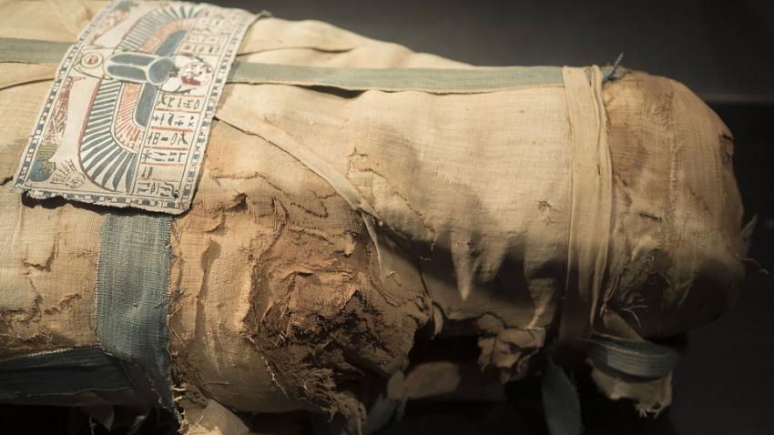 Раскрыта тайна мумии из Мадрида