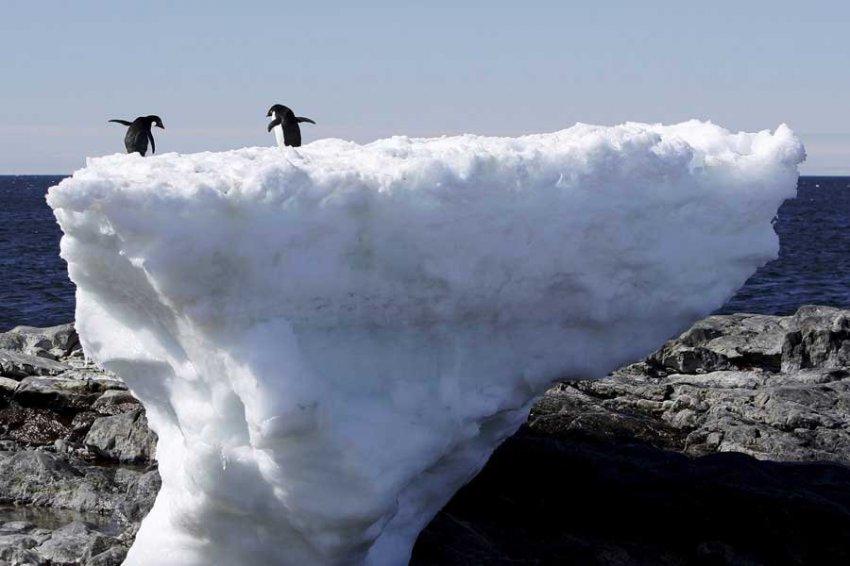 Ученые: Скорость приближения глобальной катастрофы продолжает расти