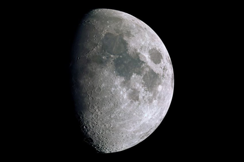 На Луне выросло первое в истории растение