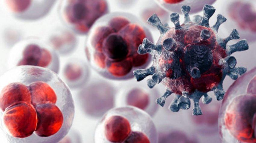 Ученые из Швейцарии трансформировали раковые клетки в безвредный жир