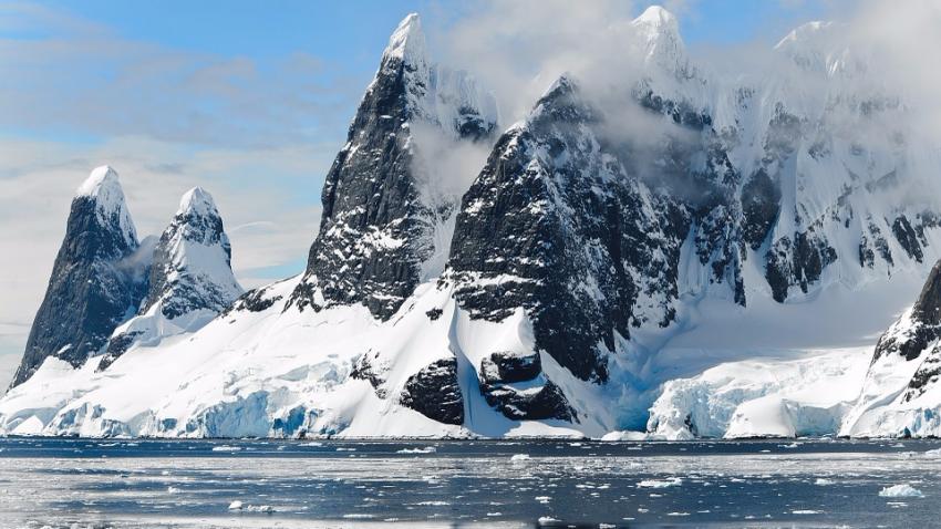 В Антарктиде нашли устойчивые к антибиотикам супербактерии