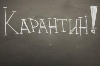 В Ульяновской области все школы закрыли на карантин