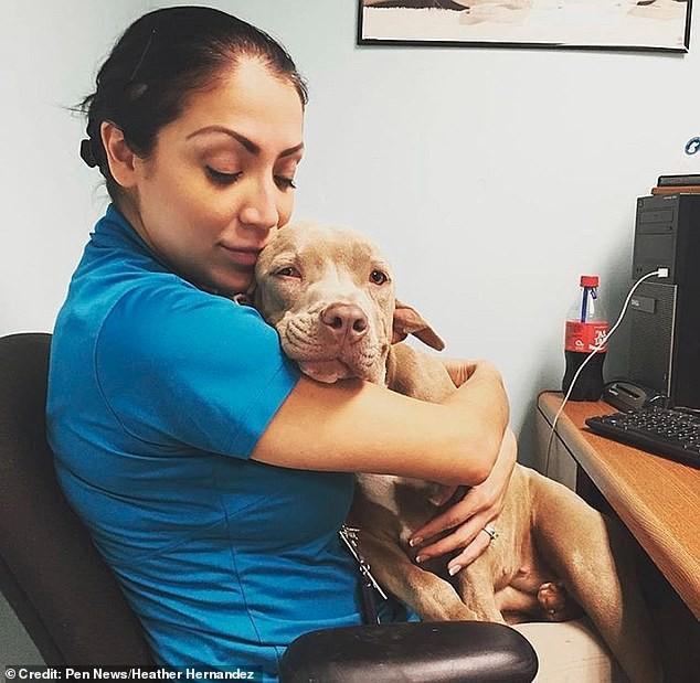 В Оклахоме обнаружили собаку-мутанта с жутким зубастым вторым ртом в... ухе