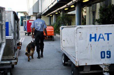 На Гаити задержали россиянина за участие в преступной группировке