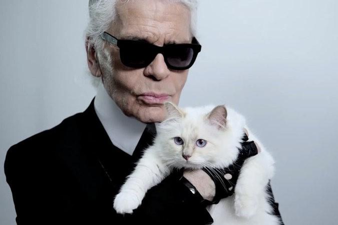 Наследницей умершего Лагерфельда может стать кошка