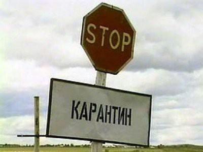 В Воронеже опровергли слухи о продлении карантина