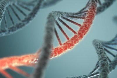Ученые: Рак зависит от пола