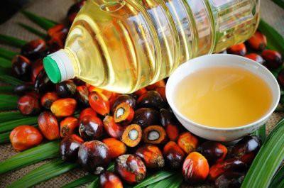 Пальмовое масло: вред или польза - факты и мифы