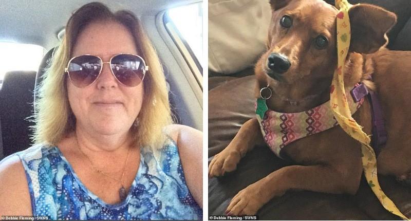 Жительница Флориды решила заморозить себя и свою собаку, чтобы воскреснуть в будущем