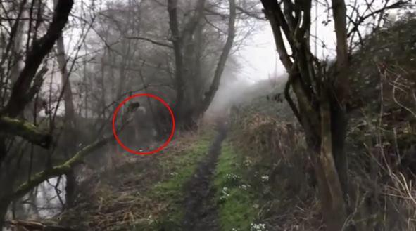 На видео засняли двигающегося призрака с головой-черепом