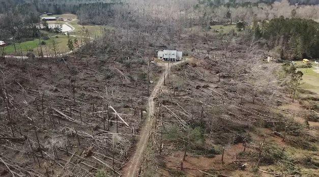 Разрушительный торнадо вырвал все деревья, но чудесным образом обошел дом