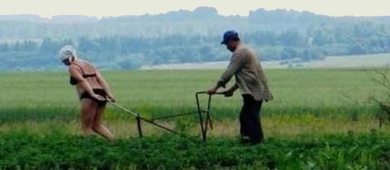 Российским селянкам хотят отменить укороченную рабочую неделю