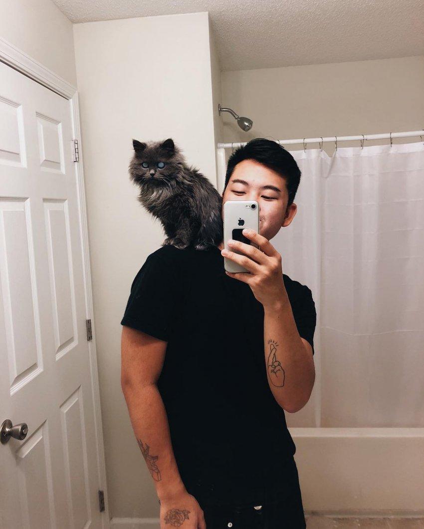Кот, похожий на Короля ночи из «Игры престолов», покоряет соцсети