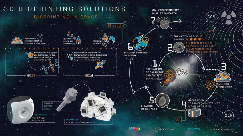 Космонавты на МКС начнут печатать себе еду на 3D-принтере