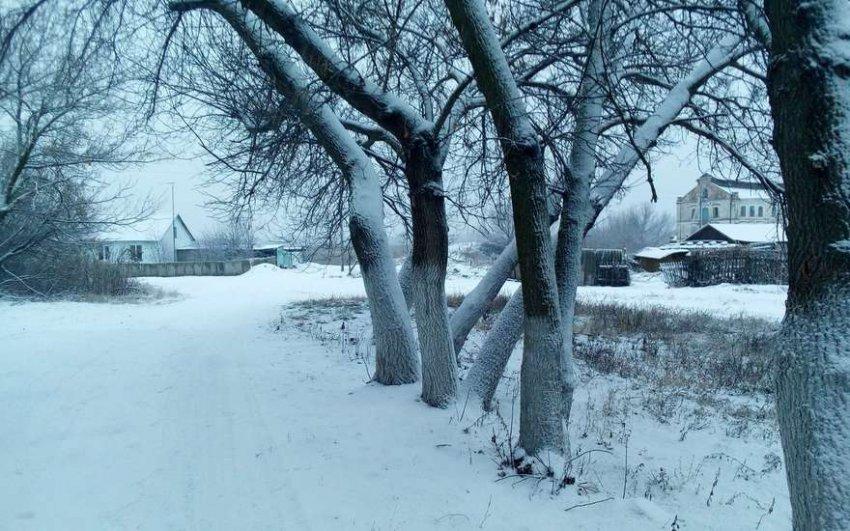 Русскую деревню собирается возродить Минсельхоз