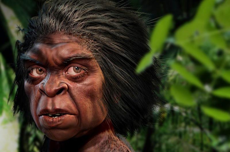 На Филиппинах нашли останки древнего человека ростом меньше «хоббита»