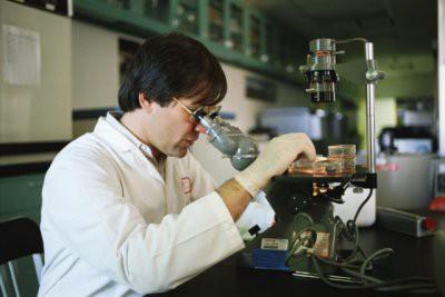Ученые открыли вирус, превращающий носителя в «камень»