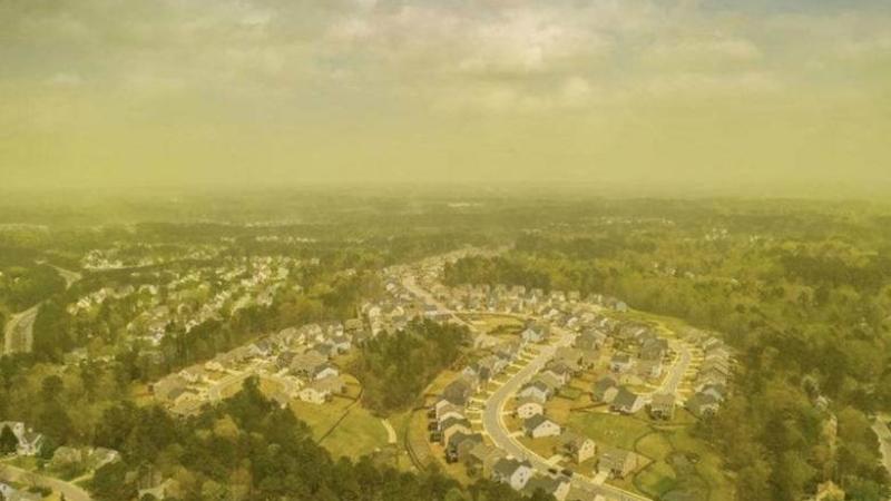 Воздух в Северной Каролине неожиданно позеленел