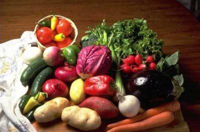 Названы быстро утоляющие голод продукты