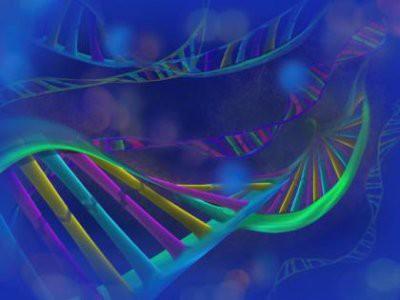 В США начались испытания CRISPR для лечения рака