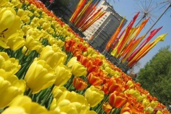 Праздничные дни в мае 2019: как отдыхаем на майские праздники, число выходных, переносы