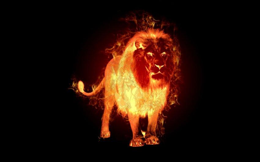 Ароматы по знакам Зодиака: стихия огня